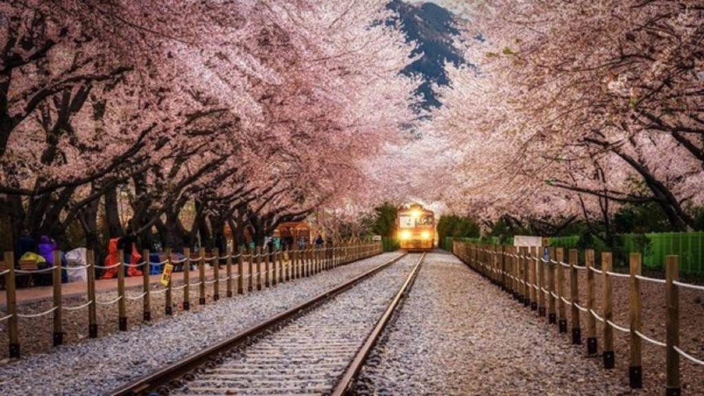 having wonderful trip to korea Using korea rail pass or korail pass from seoul to busan i'm sure you had a wonderful trip back in korea and that's so lovely of you sharing the tips to us.
