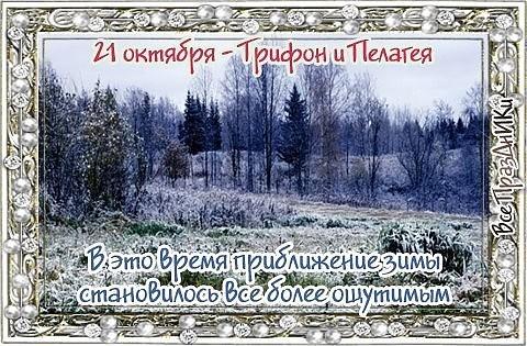 http://itd1.mycdn.me/image?id=805721961317&t=20&plc=WEB&tkn=*hIxLff8xZzmM-65CltwE1Pr81Lo