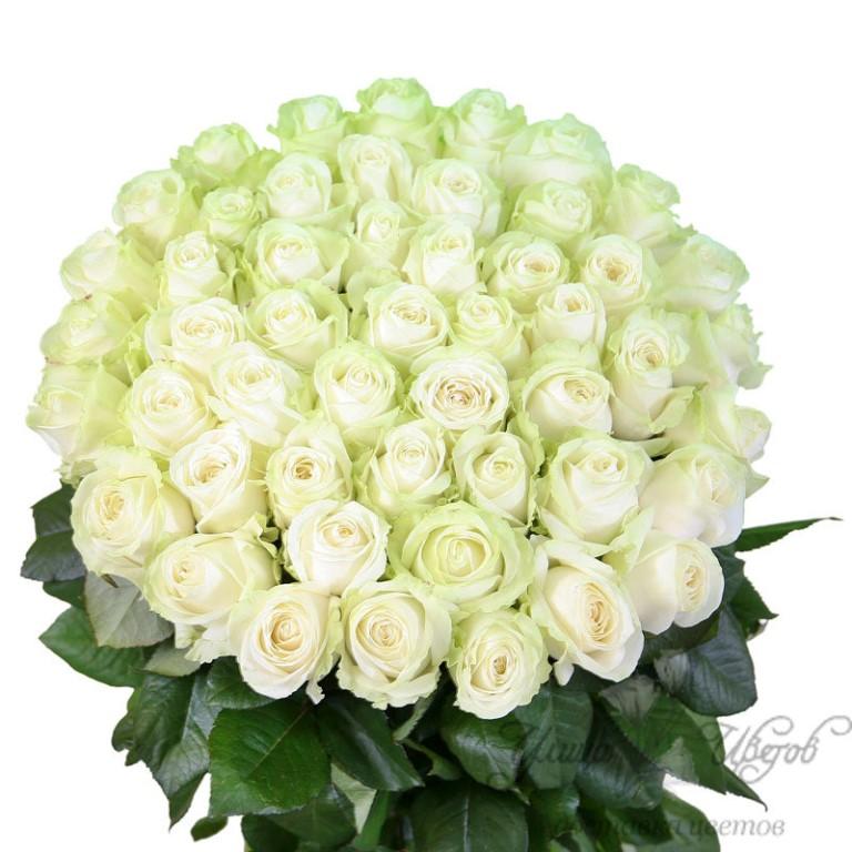 самая красивая букат белое розы