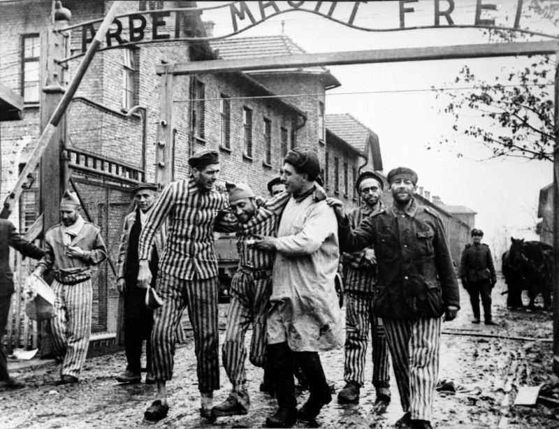 the human life lost during the german holocaust