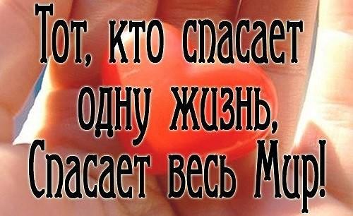 image?id=837819379521&t=20&plc=WEB&tkn=*