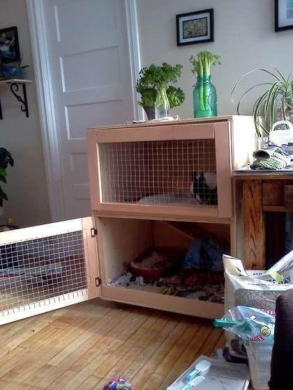 Как сделать клетку для домашнего кролика