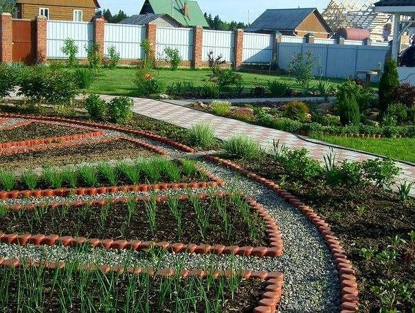 Клумбы в огороде фото