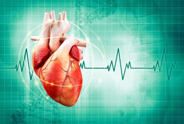 heart healthy assignment