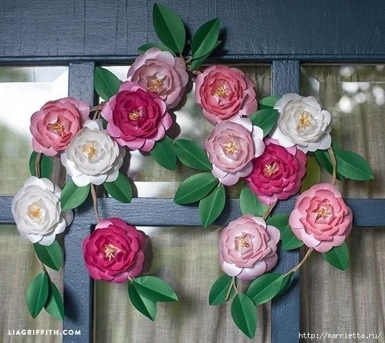 Как правильно ухаживать за домашней розой в домашних условиях