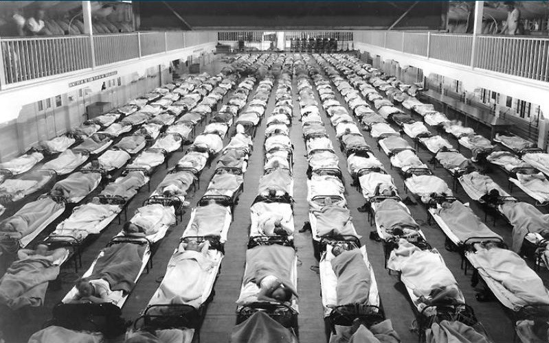 the 1918 flu pandemic Influenza 1918: teacher's guide in the spring of 1918, as the nation mobilized for war, private albert gitchell reported to an army hospital in kansas he was diagnosed with the flu, a disease.