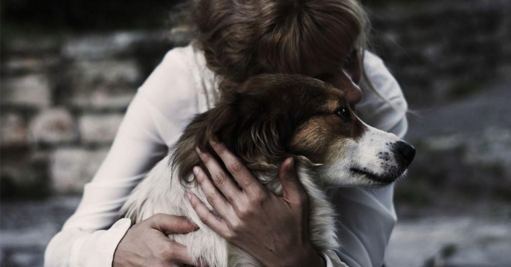 Ссору с друзьями, разрыв с любимым человеком предвещает сон, в котором на вас лает собака.