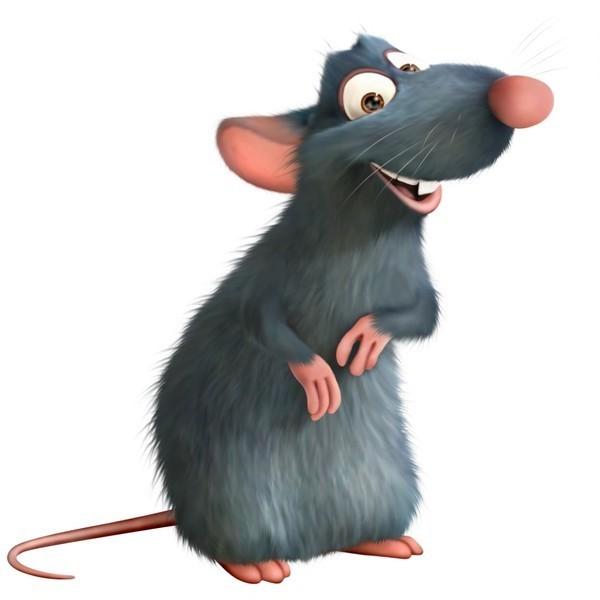 Гороскоп на год крысе земляной рекомендует внимательно считать доходы и расходы.