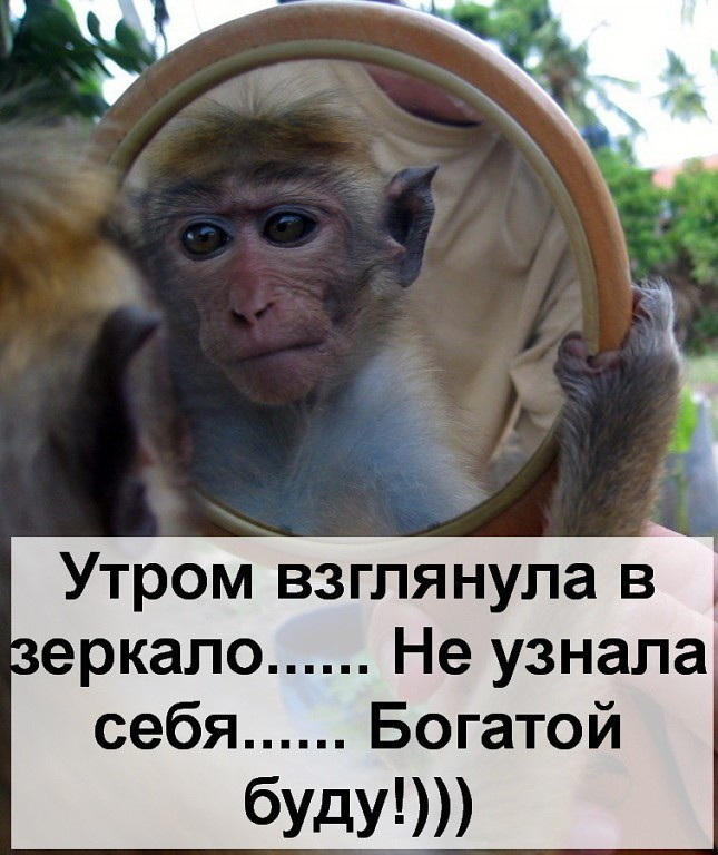 http://itd1.mycdn.me/image?id=853019687017&t=20&plc=WEB&tkn=*JIGFe8uC152mDj5BMQD8AIywHKo