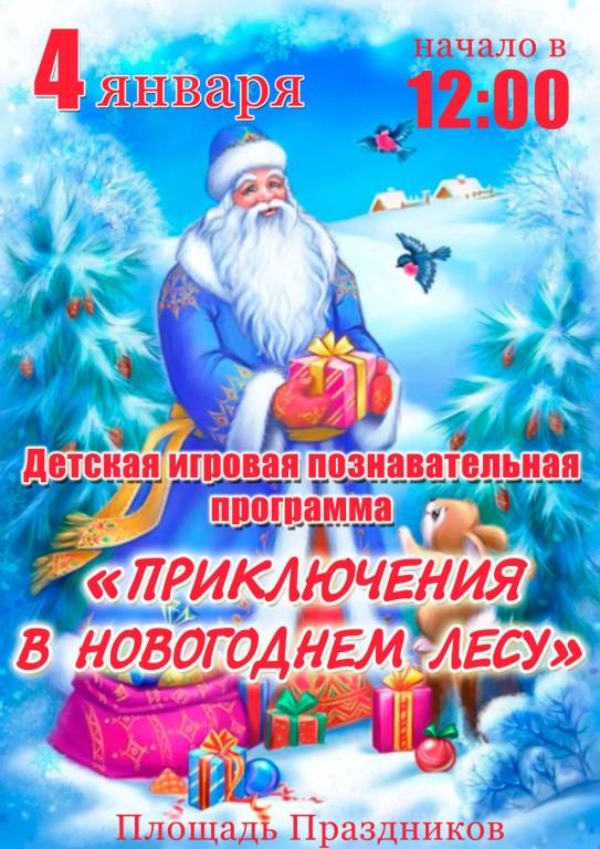 Детская игровая познавательная программа «Приключения в новогоднем лесу».
