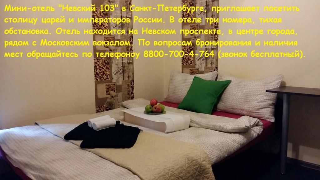 #новыйгодпитер #отелипитер #гостиницапитер #отдых