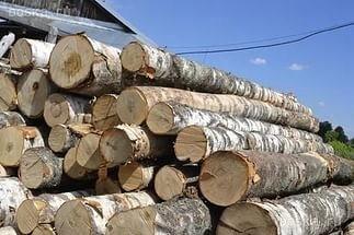 Куплю дровяную березу с доставкой в Томск